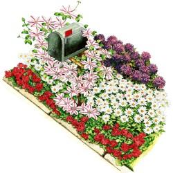 Garden, Colorful Mailbox