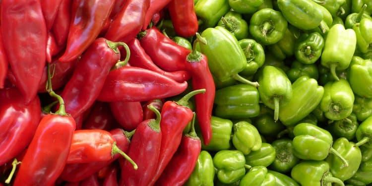 Growing Peppers Sweet versus Hot