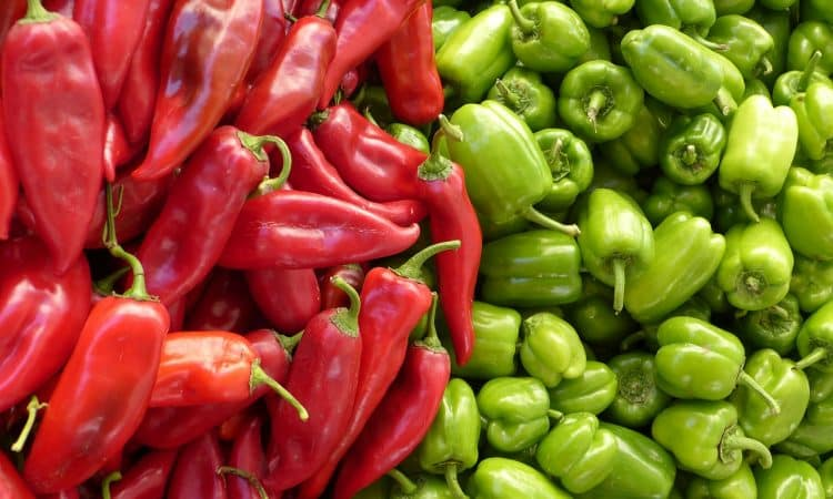Growing Peppers Sweet versus Hot