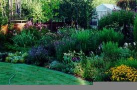 Rose & Prennial Garden Design for the home garden, Landscaping designs