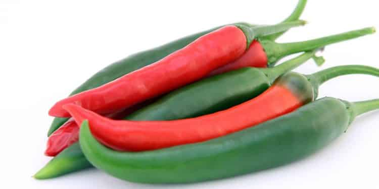 peppers hot hybrids