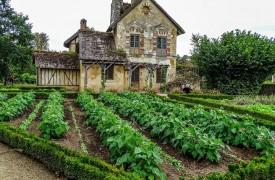 French Vegetable Garden
