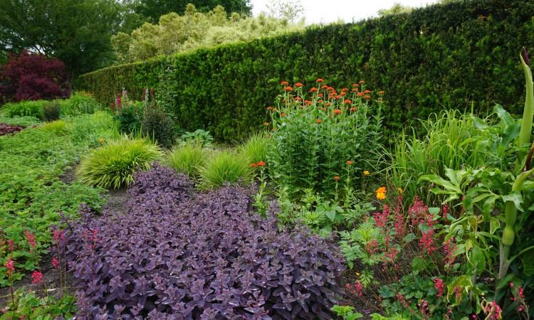 Perennial Garden - Spring