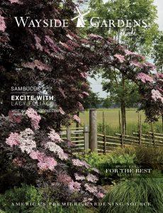 Wayside Garden Catalog