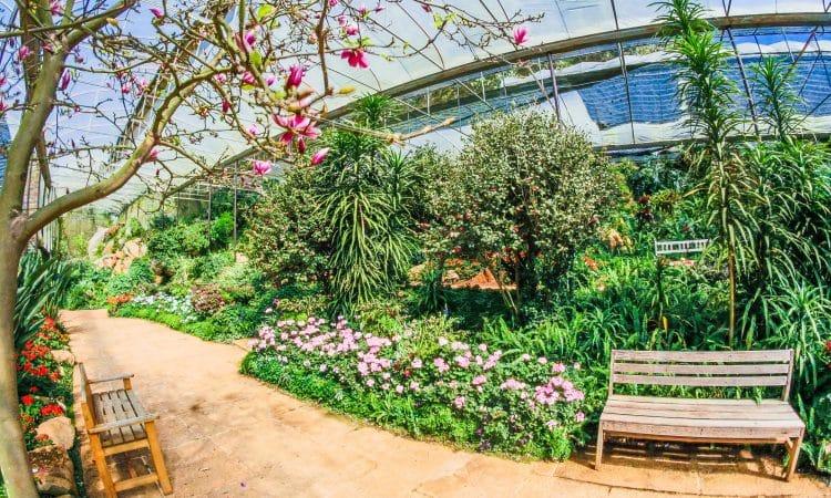 botanical garden,
