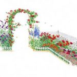 Butterfly/ Hummingbird - Garden Plan
