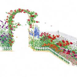 Charmant Butterfly/ Hummingbird   Garden Plan