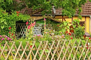 Gardening fence to protect plants