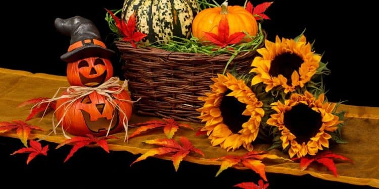 Halloween Horticulture