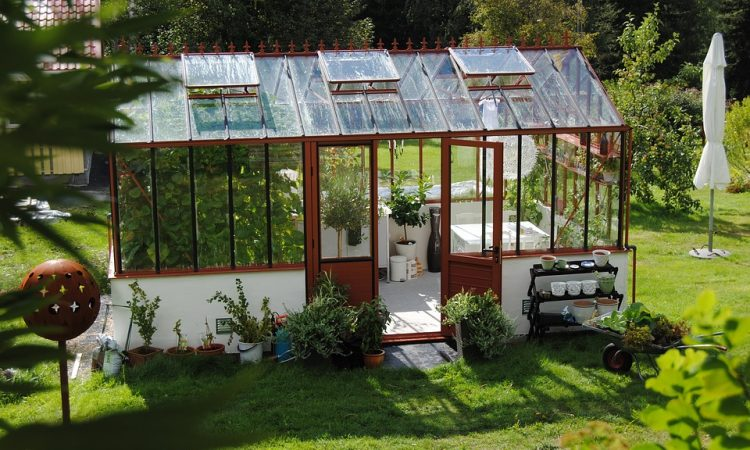 Important Facts About Hobby Greenhouses