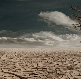 ANTICIPATING DROUGHT