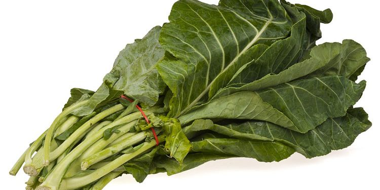 How to grow Collard Greens from seed