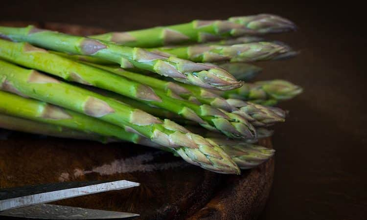 How to plant Asparagus