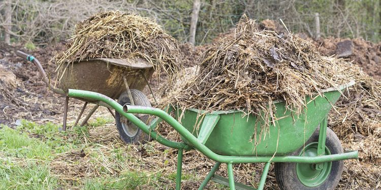 Organic Farm yard Manure for your garden soil