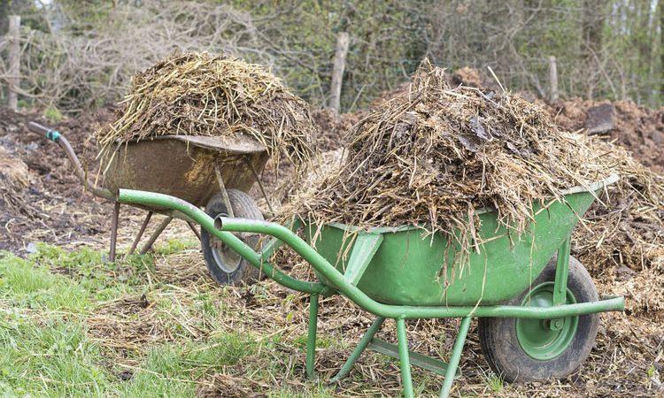 Organic Farm yard Manure for your garden soil