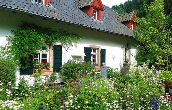 Planning Cottage Gardens - History, Spring, Summer, Herbs and Rose Plants