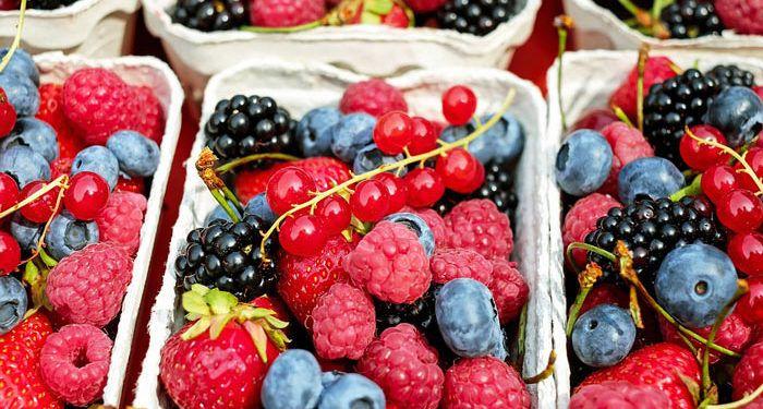 Garden Fruit & Fruit Trees