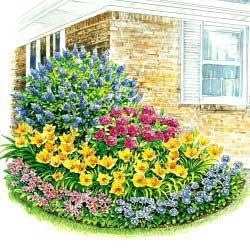 corner garden design with 5 plants