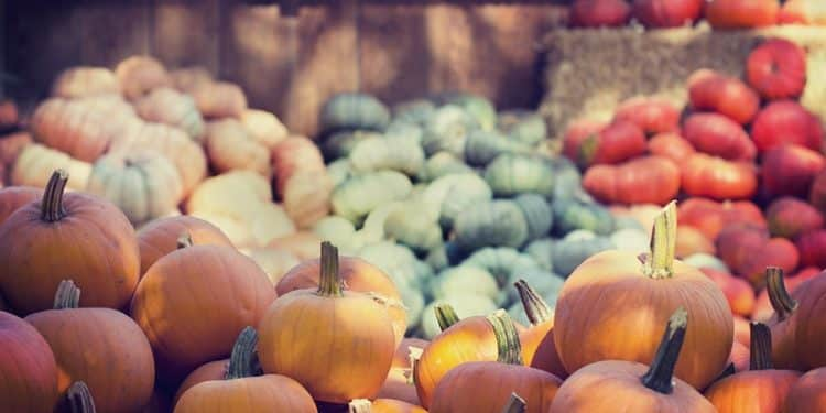 Autumn Harvest Celebration Around the Globe