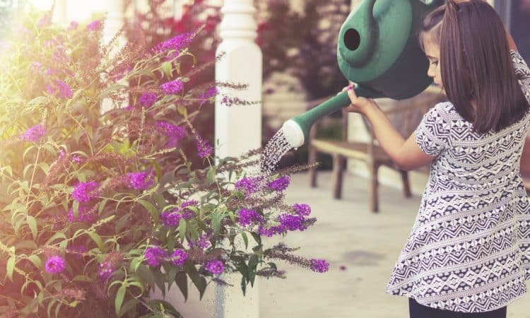 How to Plan and Plant a Garden for Kids