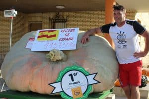 1157 kg Largest Pumpkins In The World & Records