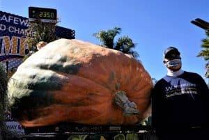 2350 pound pumpkin from MN Travis