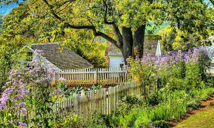 5 steps to create a successful garden