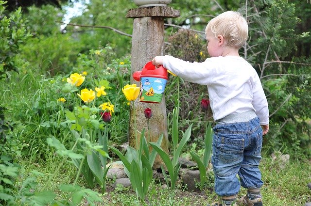 Have You Thought About Gardening With Your Kids?