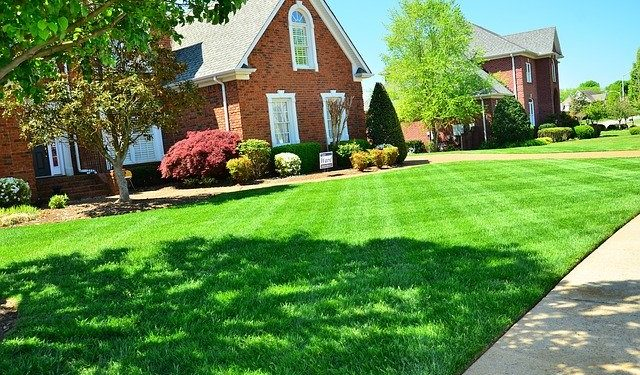 Helping Your Lawn Maintain a Healthy Appearance
