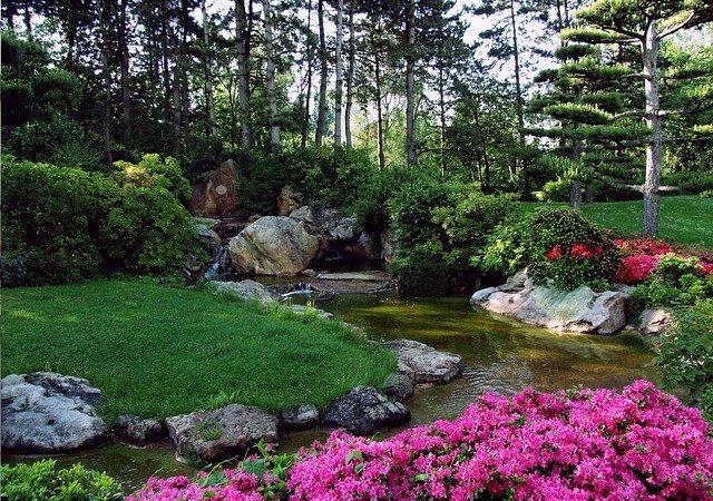 Tips For Proper Landscaping For Your Garden