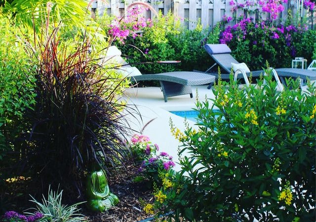 4 Ways You Can Improve Your Backyard Garden