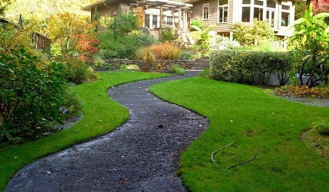 How to Select Plants for Outside Your Home