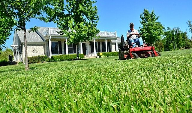 Key Benefits Of Hiring A Lawn Care Specialist