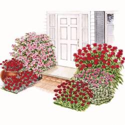 Garden, Red Welcome Plan