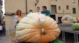 Spain giant pumpkin 1142 kilos