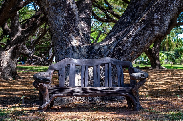 rustic garden bench easy to make with scrap wood or driftwood