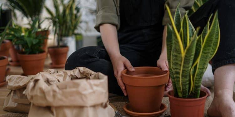 3 Ways to Manage Garden Was