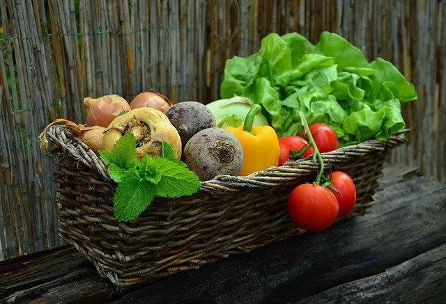Organic Produce You Can Grow in your Garden this Summer